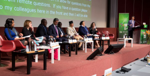 Inclusion panel